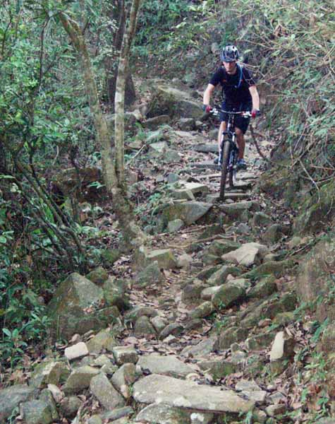 Ho Pui trail - rough section